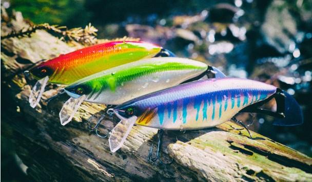 Смарт-приманка помогает выработать оптимальную тактику для рыбалки