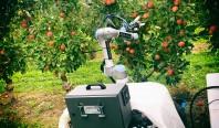 Робот для сбора яблок собирает один фрукт каждые 7 секунд