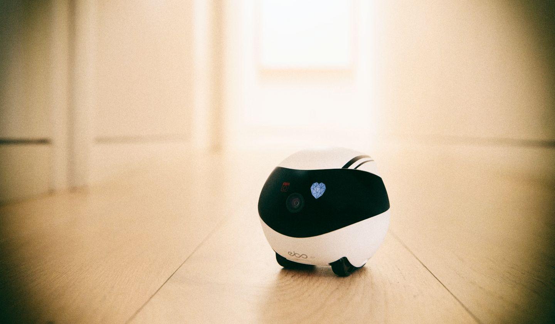 Представлен подвижный робот-оператор для видеозвонков