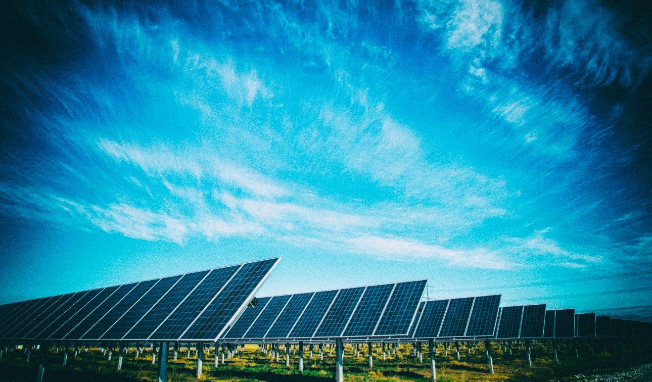 LG планирует полностью перейти на возобновляемую энергию к 2050