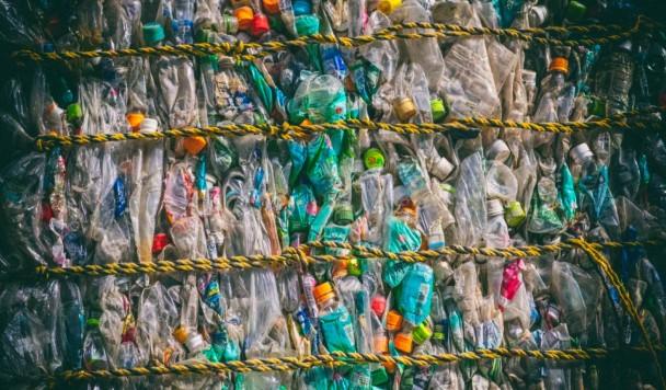 Пластиковый мусор можно превратить в еду