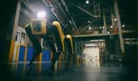 Робопсы Boston Dynamics начинают охранять заводы Hyundai