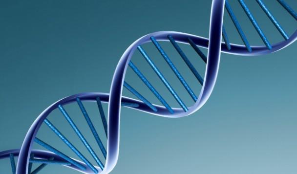 ДНК для суперкомпьютера