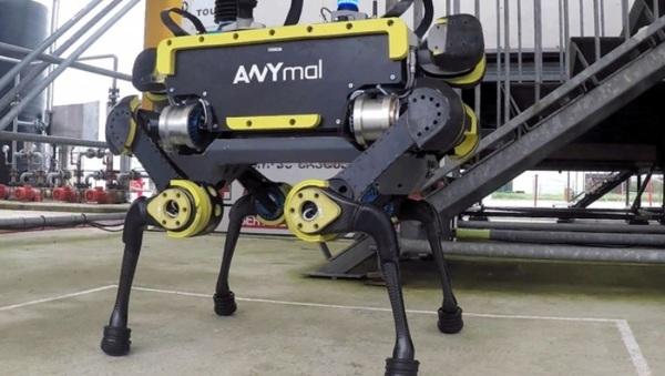 У робота SpotMini из Boston Dynamics появился достойный конкурент (видео)