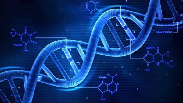 Ученые смогли передать аудиотрек через ДНК