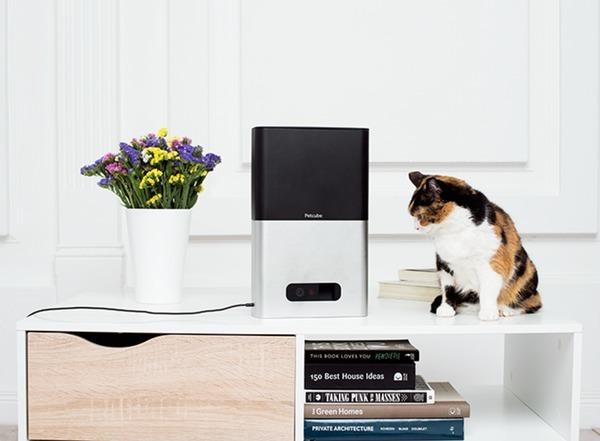Новые устройства Petcube собрали на Kickstarter необходимые $200 тысяч всего за 15 дней