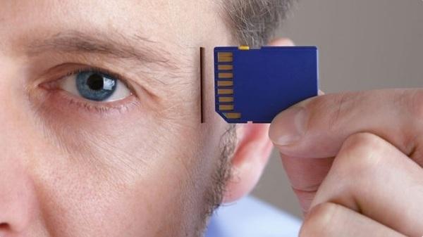 Учёные научились переносить воспоминания