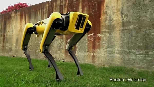 Boston Dynamics опубликовал видео с новым четвероногим роботом