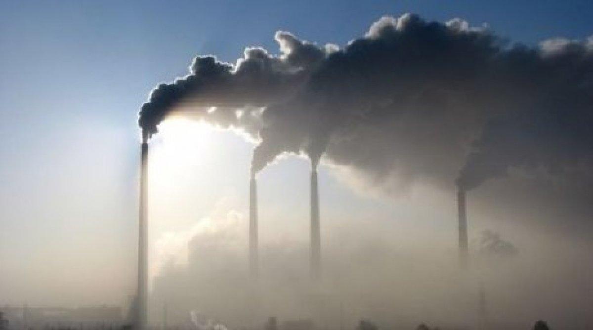 Apple, Google и Microsoft больше других заботятся об экологии
