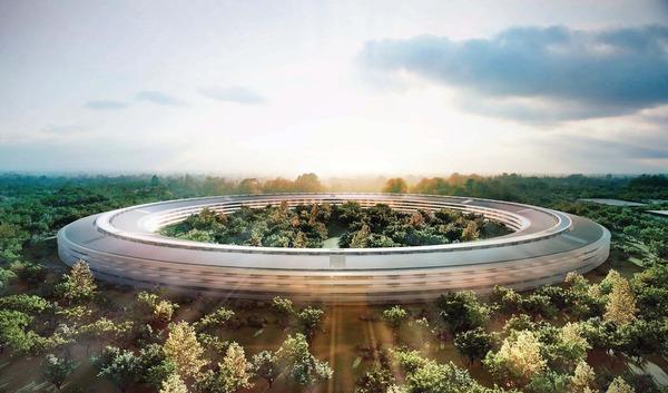 В Сан-Франциско жалуются на Apple, которая скупила все деревья для своего кампуса