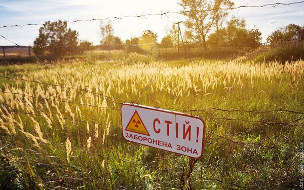 Заявки на строительства солнечных электростанций в Чернобыльскую зоне отчуждения подало 52 компании