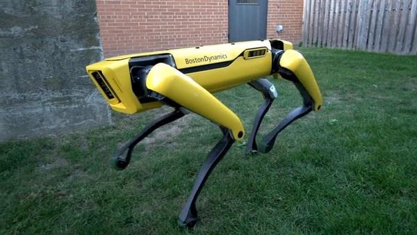 Инженеры Boston Dynamics вновь обижают своих роботов