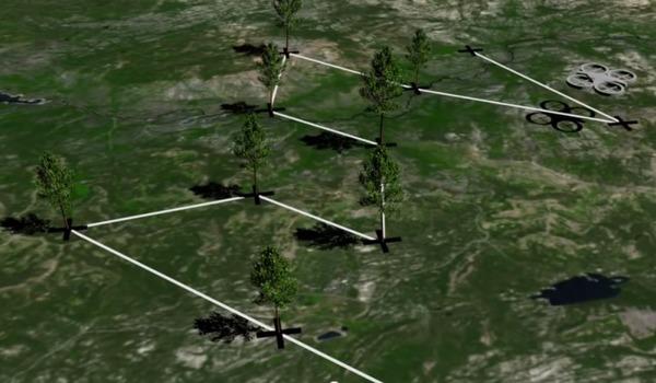 Дроны могут помочь в озеленении планеты